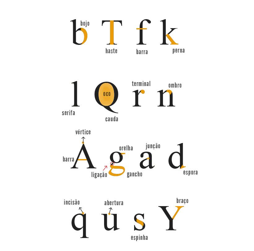 tipografia-anatomia-01