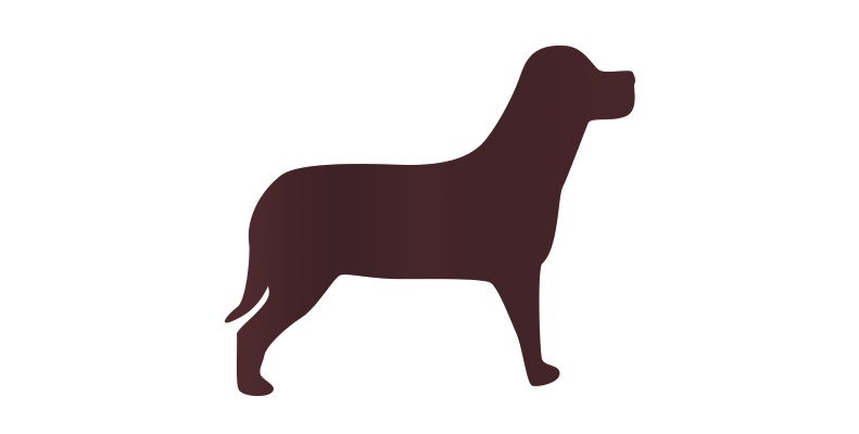 ilustração na cor marrom escuro de um cachorro